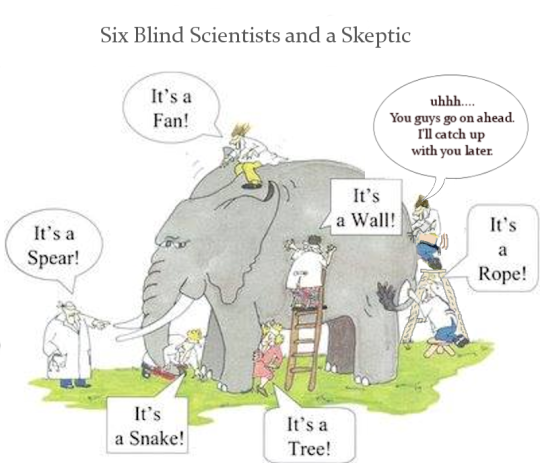Six Blind Scientists and a Skeptic