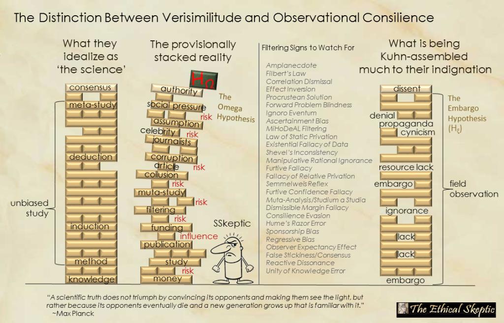 Verisimilitude Versus Field Observation